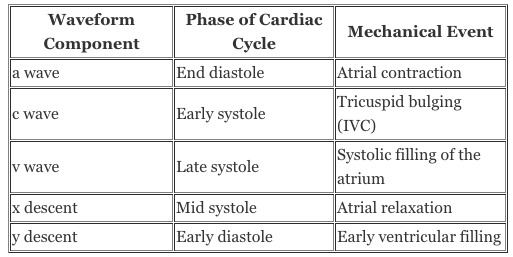 null at https://www.openanesthesia.org/wp-content/uploads/2015/03/CVP-waveform-Components-table.png